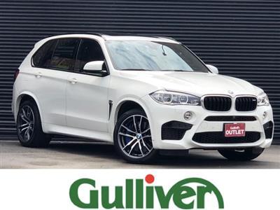 BMW_X5 M